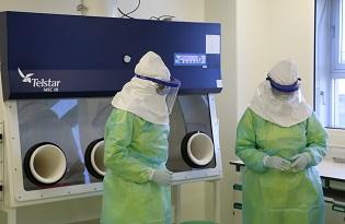 imagem do post do Instituto Ricardo Jorge integra projeto europeu para investigação de microrganismos de elevado risco patogénico