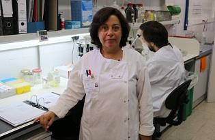 imagem do post do Estudo do Instituto Ricardo Jorge abre caminho a nova estratégia terapêutica para a anemia hereditária grave