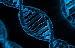 imagem do post do 21ª Reunião Anual da Sociedade Portuguesa de Genética Humana