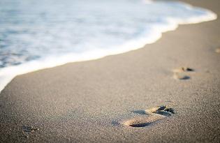 imagem do post do Instituto Ricardo Jorge publica artigo sobre primeiro surto provocado por areias de praias