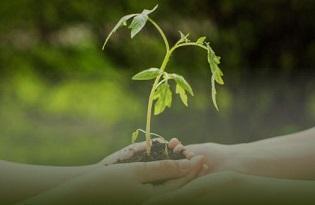 imagem do post do Dia Mundial da Saúde Ambiental 2020